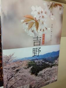 130226_吉野_桜ポスター