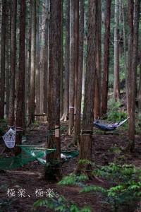 140701_森林セラピー1