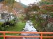 31三鈷の松(天川)