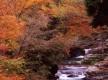 91赤岩渓谷