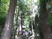 92黒滝ハイキングコース1